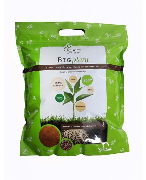 copy of Big plant 500g