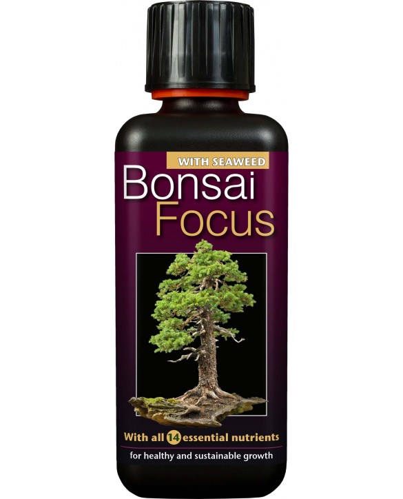 copy of Bonsai Focus 100ml