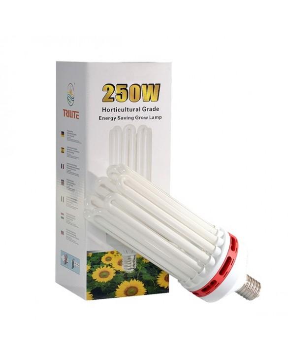 Trilite 250W Grow