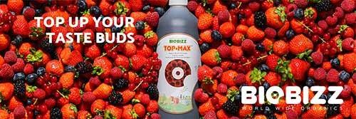 Biobizz Top Max - organski pospeševalec cvetenja
